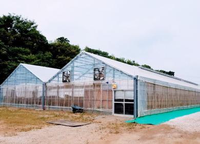 写真 第二農場